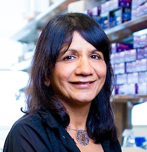Amita Sehgal, PhD